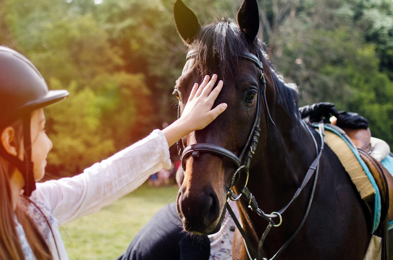 une fille qui caresse un cheval